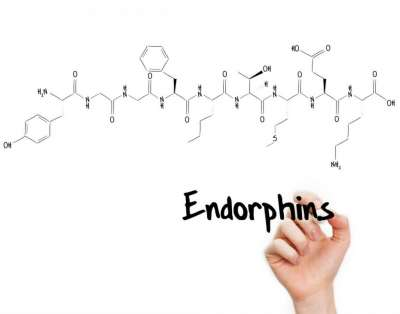 Alcohol and Endorphins